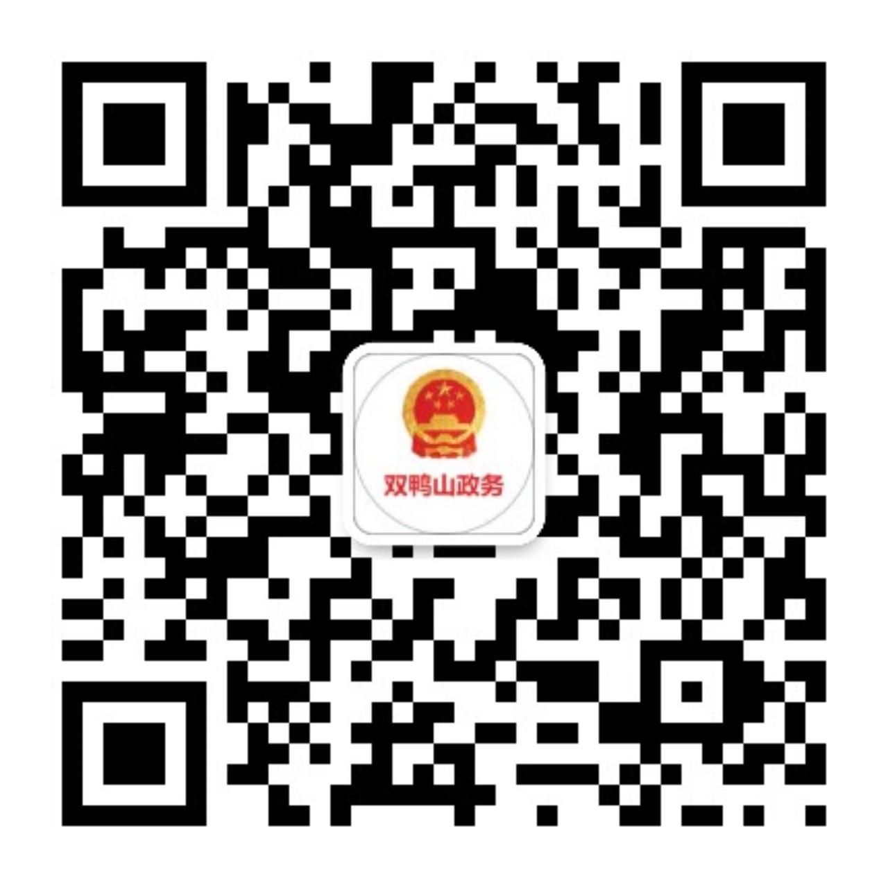 集贤县领导视察网安监控中心运作和城市建设与管理工作情况